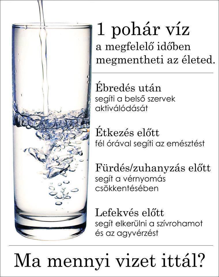 Vízfogyasztás és anyagcsere