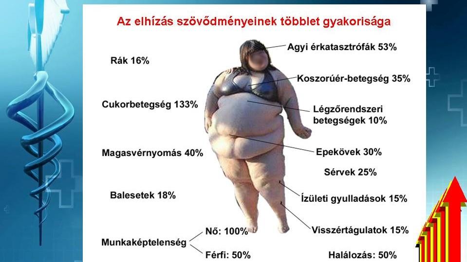Diéta a túlsúlyos hipertóniában - Honnan tudhatom hogy túlsúlyos-e remix