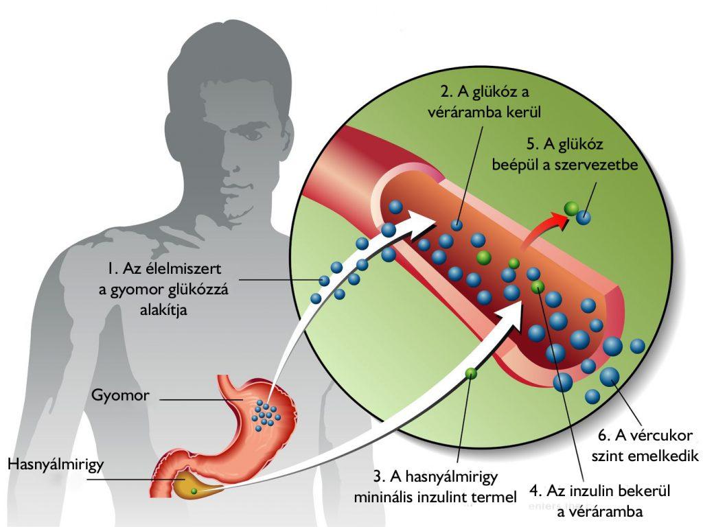 magas vérnyomás és magvak