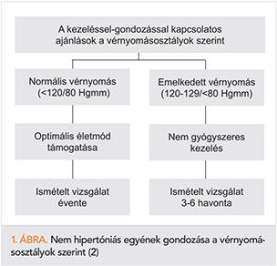 a hipertónia ajánlásainak osztályozása