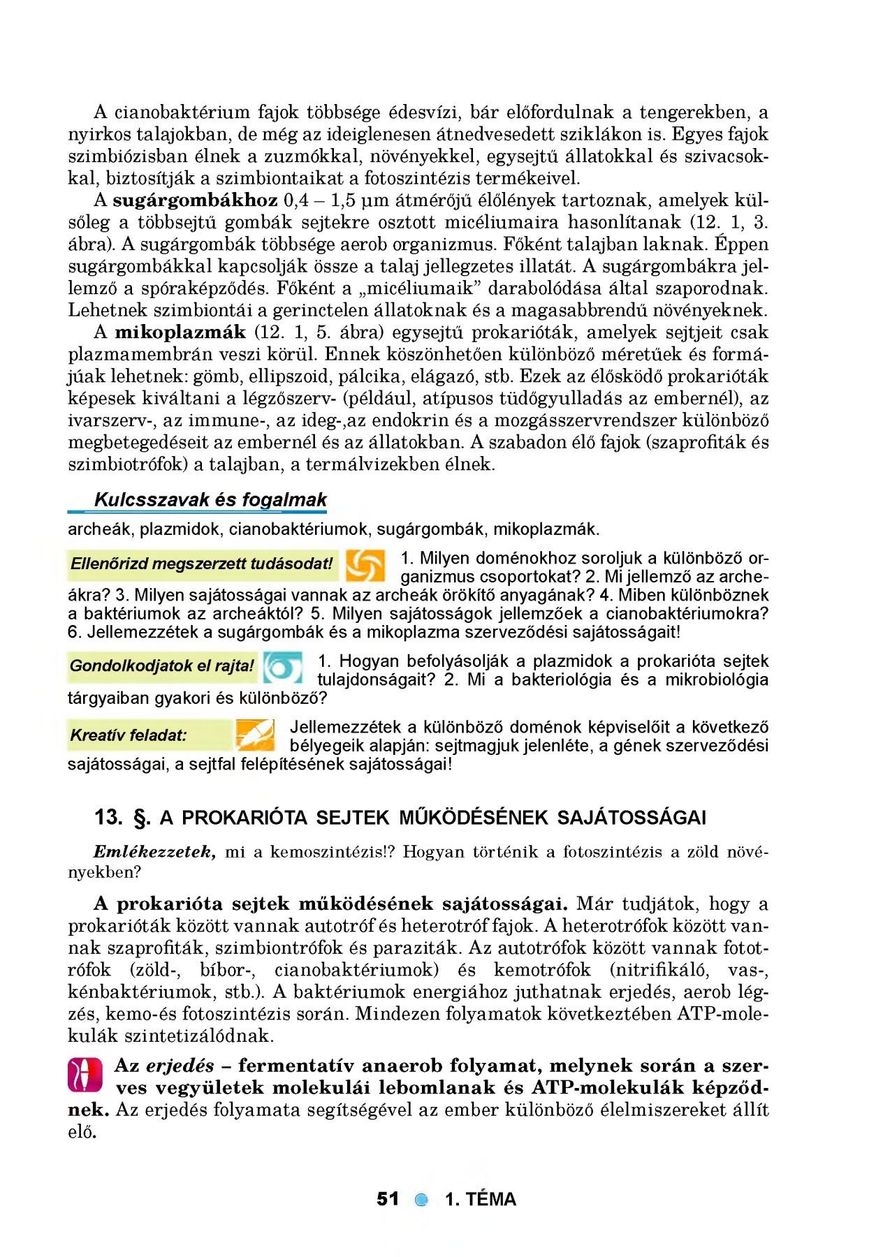 hipertónia kód a mikrobiológia 10 számára gyermekeknél
