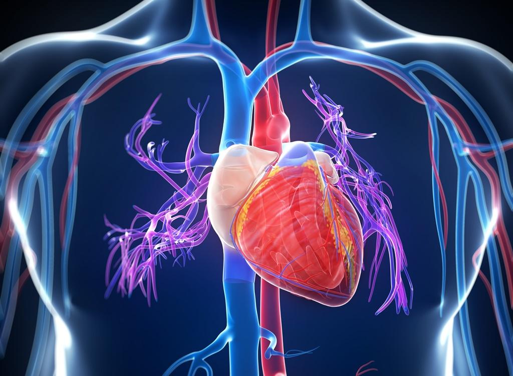 Idegsebész mért csapást a magas vérnyomásra