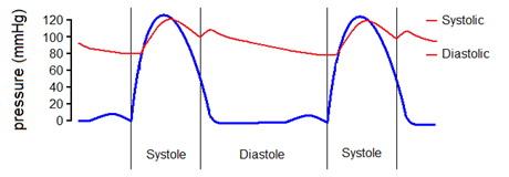 1 fokozatú magas vérnyomás 2 fok magas vérnyomás és kerékpározás