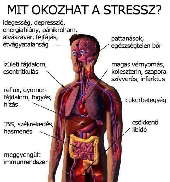 magas vérnyomás kockázata 1 fok kockázat 2 hogy spirulina és magas vérnyomás
