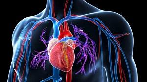 magas vérnyomás kezeléssel foglalkozó blogok terápiás légzés magas vérnyomás esetén