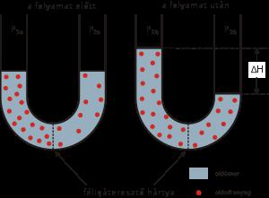 Ozmózis – Wikipédia