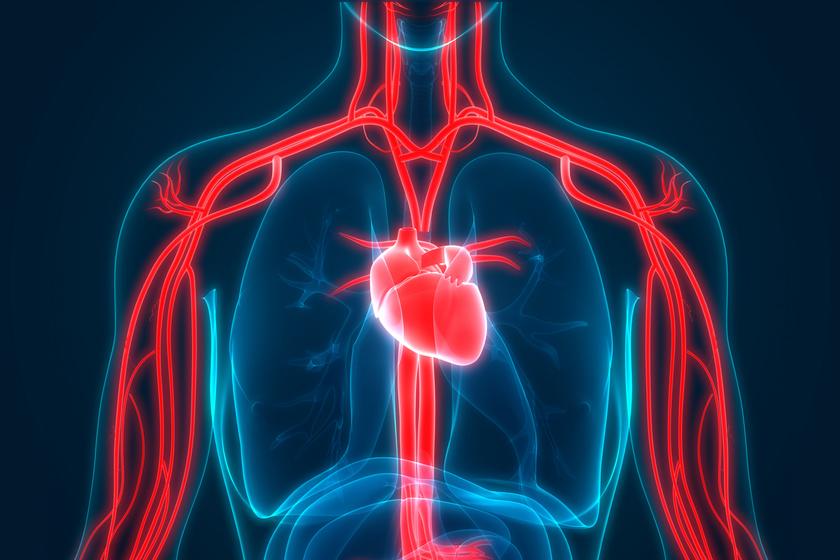 magas vérnyomású agyi erek károsodása